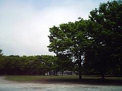 050426_01.jpg