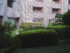 050429_01.jpg