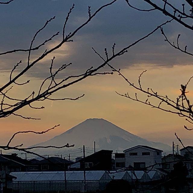 今日の富嶽 その2