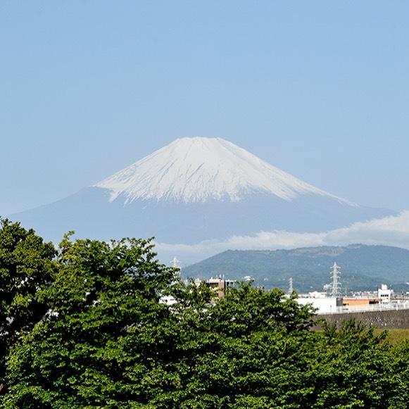 今日の富嶽