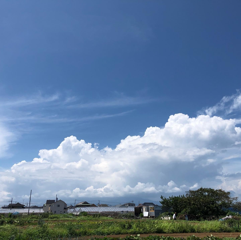 今日の夏空